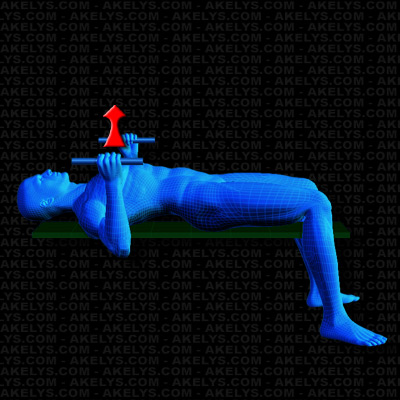 D velopp couch aux halt res prise marteau technique - Programme prise de force developpe couche ...